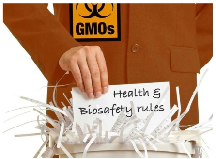 GMOs to escape regulation